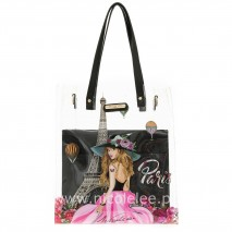 VIVIAN 2PC SET TRANSPARENT BAG